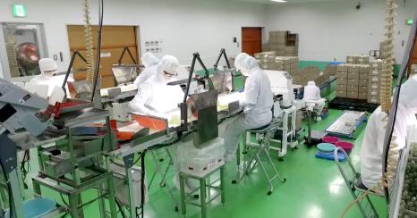 OEM製造・販売 糖衣